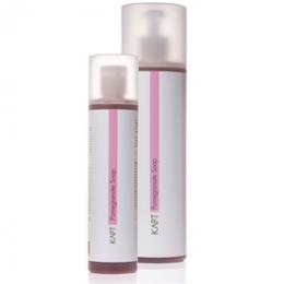 Карт Гранатовое мыло для жирной проблемной кожи,250мл-Kart MediCare Pomegranate Liquid Soap Kart,250мл -